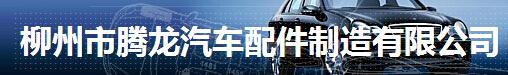 柳州市腾龙汽车配件制造有限公司