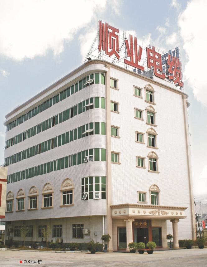 广西顺业线缆有限公司
