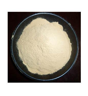 酸性蛋白酶